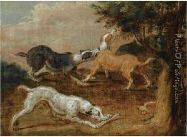 Four Hounds In A Wooded Landscape Oil Painting - Abraham Hondius