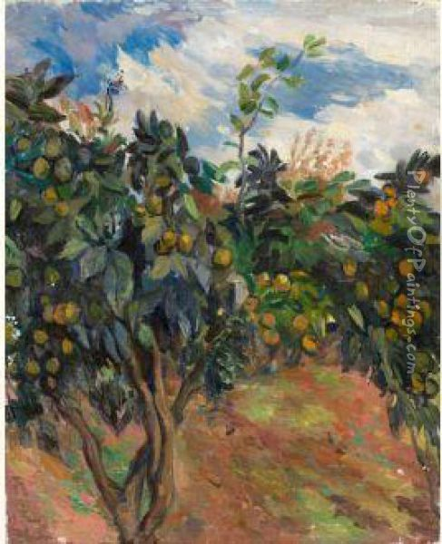 Orange Trees With Fruits Oil Painting - Aristarkh Vasilievic Lentulov