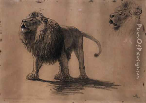Lion Studies Oil Painting - Briton Riviere