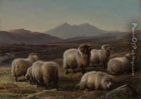 Sheep In A Highland Landscape Oil Painting - Charles Jones