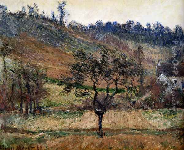 The Valley Of Falaise Oil Painting - Claude Oscar Monet