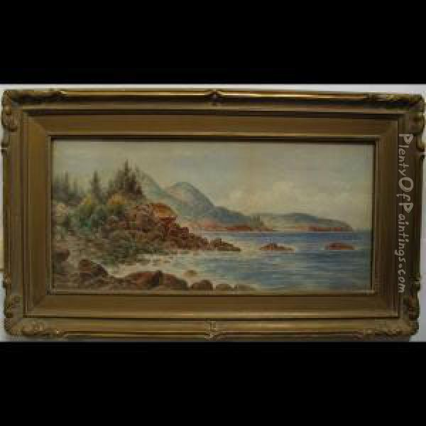 On The Coast Of Maine Oil Painting - Frederick Arthur Verner