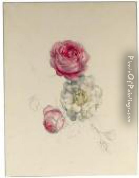 A Study Of White And Pink Roses Oil Painting - Geraldine Jacoba Van De Sande Bakhuyzen