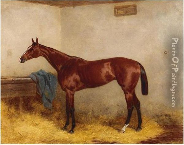 Chopette, A Bay Racehorse In A Stable Oil Painting - Harry Hall