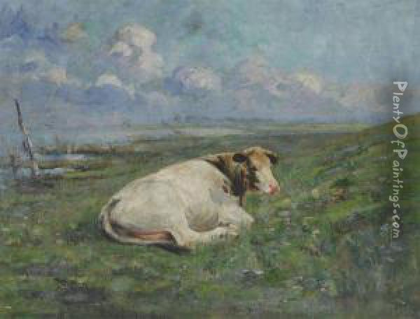 Cow Lying On The River Bank Oil Painting - Henri Van Muyden