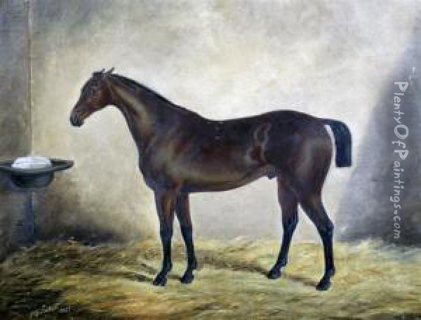Race Horse In A Stable Oil Painting - J. Quinton