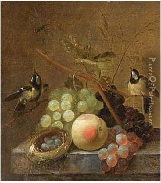 A Still Life Of Grapes, A Peach And A Dragonfly, Together With Blue Tits And A Bird's Nest, Arranged Upon A Marble Ledge Oil Painting - Johannes Hendrick Fredriks