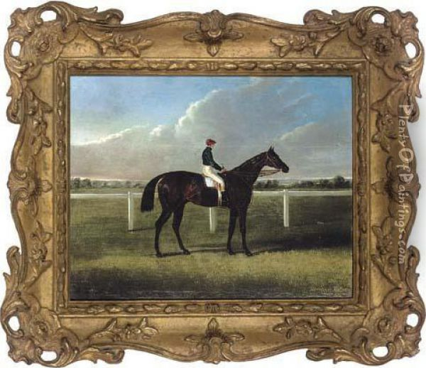 Portrait Of A Racehorse, With Jockey Up Oil Painting - John Frederick Herring Snr