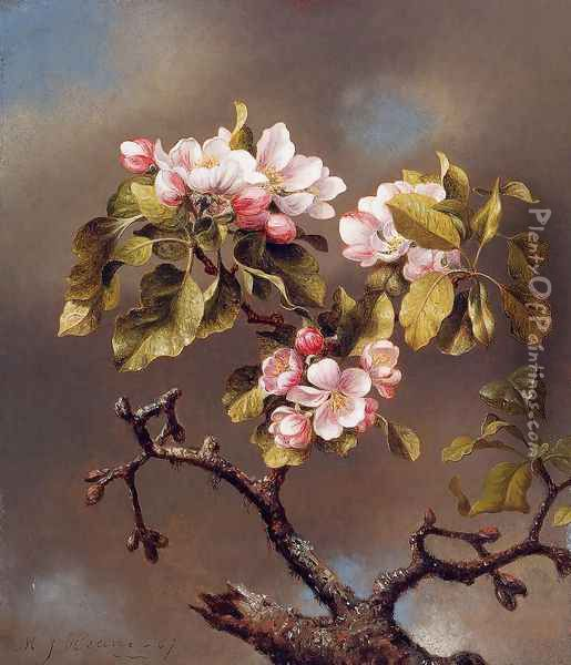 Branch Of Apple Blossoms Against A Cloudy Sky Oil Painting - Martin Johnson Heade