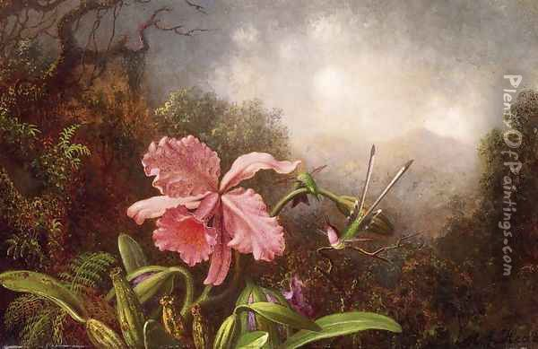 Two Hummingbirds By An Orchid Oil Painting - Martin Johnson Heade