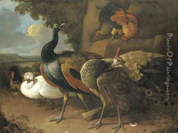 A peacock, a peahen, poultry and other birds in a rocky landscape Oil Painting - Melchior de Hondecoeter