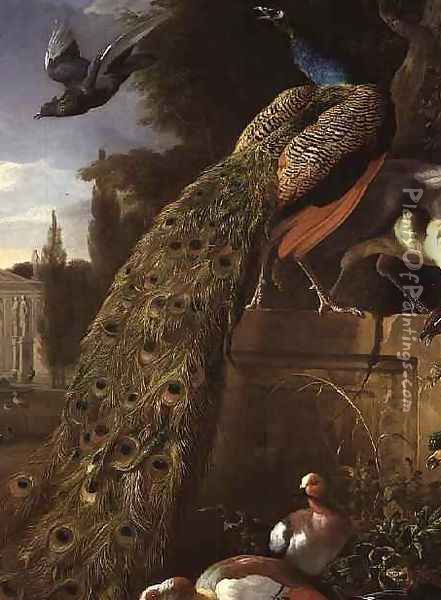 Peacock and a Peahen on a Plinth with Ducks and Other Birds in a Park Oil Painting - Melchior de Hondecoeter