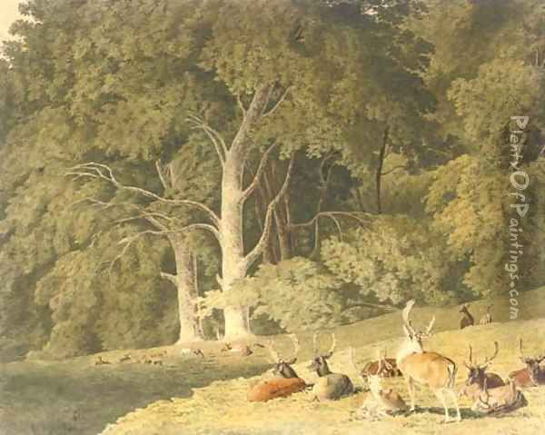 A herd of deer resting in a glade Oil Painting - Robert Hills
