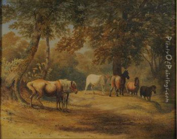 New Forest Ponies Oil Painting - Robert Hills