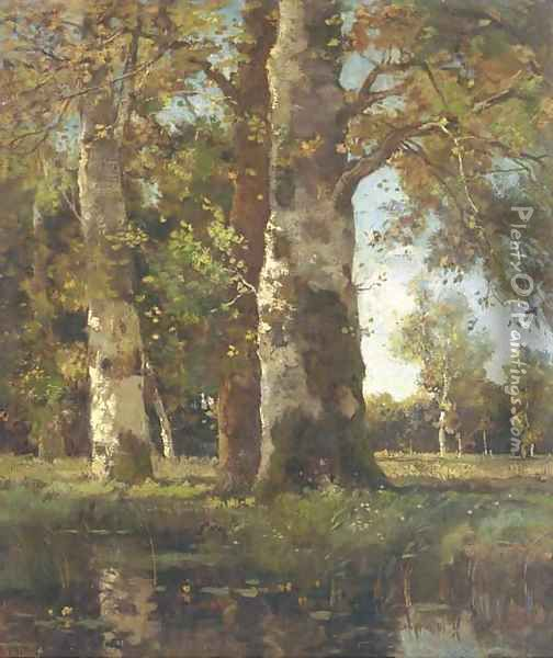Beuken stammen sunlit beeches by a pond Oil Painting - Theophile Emile Achille De Bock