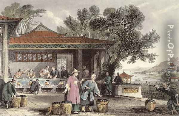 The Culture and Preparation of Tea, from 'China in a Series of Views' Oil Painting - Thomas Allom