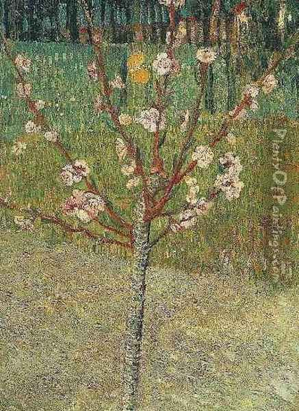 Almond Tree In Blossom Oil Painting - Vincent Van Gogh