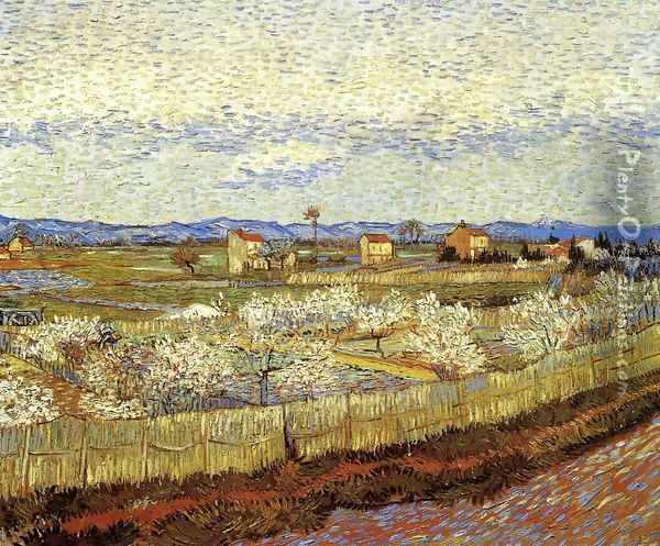La Crau With Peach Trees In Blossom Oil Painting - Vincent Van Gogh