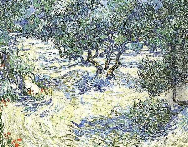 Olive Grove Oil Painting - Vincent Van Gogh