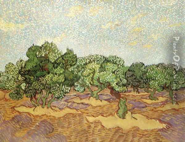 Olive Grove 3 Oil Painting - Vincent Van Gogh