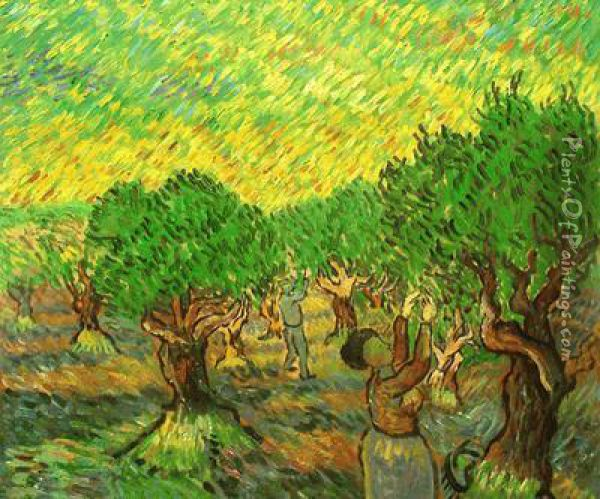Olive Grove With Picking Figures Oil Painting - Vincent Van Gogh