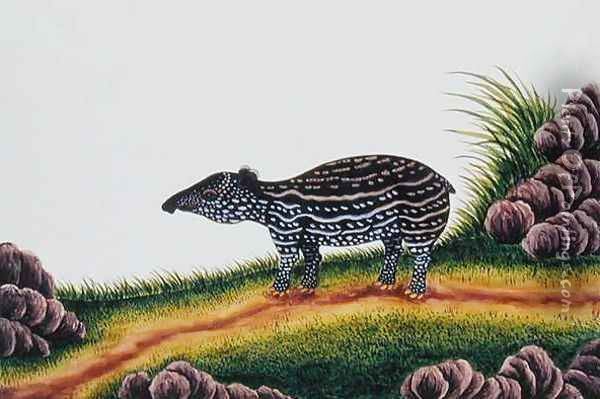 Young Tapir of Malacca, from 'Drawings of Animals, Insects and Reptiles from Malacca', c.1805-18 Oil Painting - Anonymous Artist