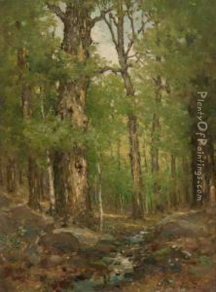 Forest Interior Oil Painting - Cullen Yates