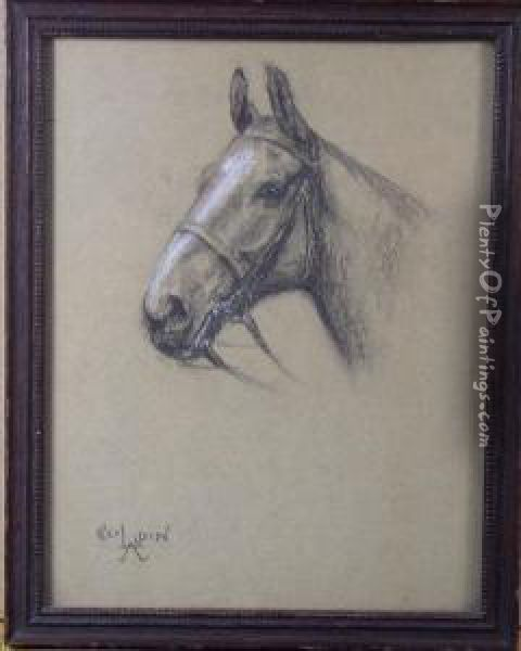 Portrait Of Horse'shead Oil Painting - Cecil Charles Aldin