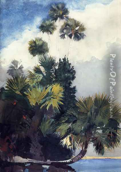 Palm Trees, Florida Oil Painting - Winslow Homer