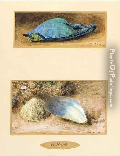 Still life of a dead bird; and Still life of two shells on a mossy bank Oil Painting - William Henry Hunt