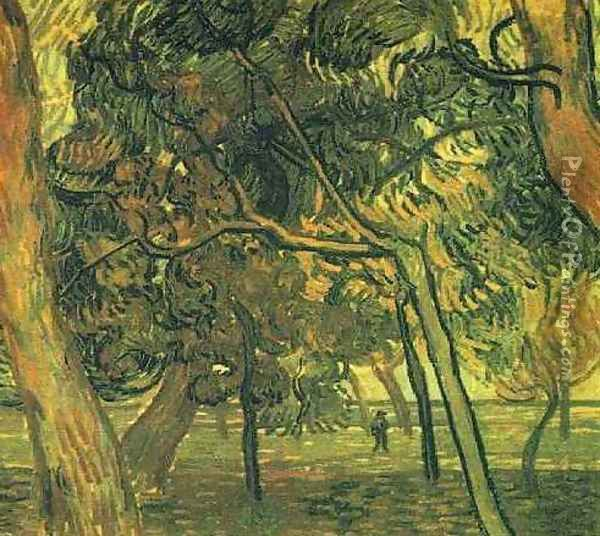 Study Of Pine Trees Oil Painting - Vincent Van Gogh