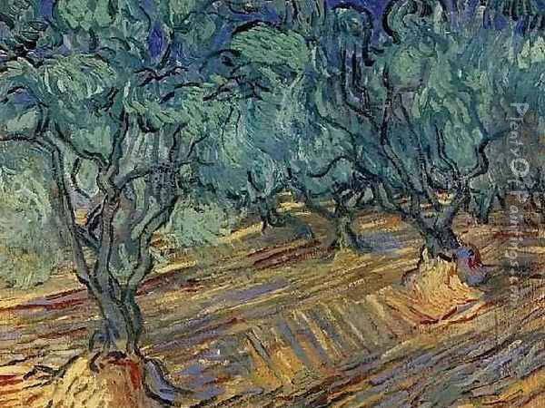 Olive Grove 2 Oil Painting - Vincent Van Gogh