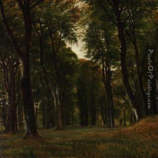 Forest Scene With Tall Trees Oil Painting - P. C. Skovgaard